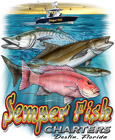 Destin Offshore Fishing Semper Fish Charters